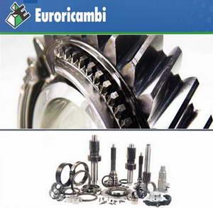 Каталог неоригинальных запасных частей производства Euroricambi 2009
